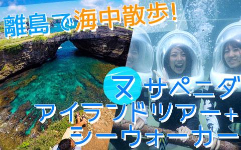 バリ島 厳選レンボンガン島 ヌサペニダアイランドツアー+シーウォーカー