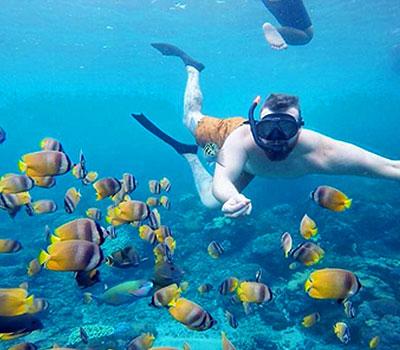 バリ島 厳選レンボンガン島 感動の出会い マンタポイントでマンタと一緒にシュノーケリング 画像