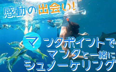 バリ島 厳選レンボンガン島 マンタポイントでマンタと一緒にシュノーケリング