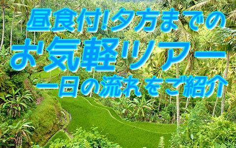 バリ島 厳選オプショナルツアー バリの世界遺産 パクリサン河川とキンタマーニツアー 一日の流れ