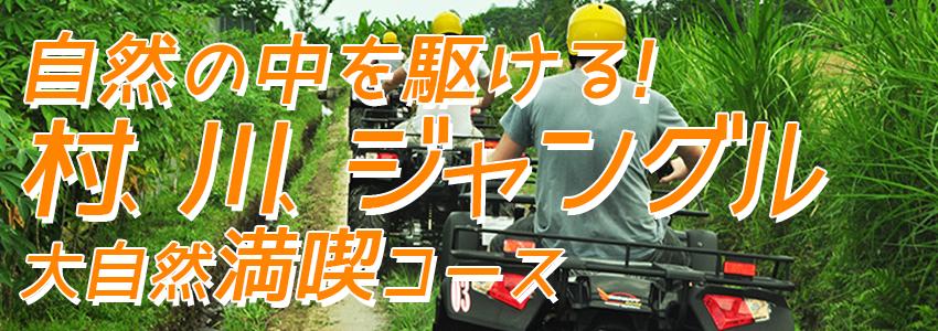 バリ島 厳選アクティビティ Pertiwi Quad Adventure ATVライド 特徴