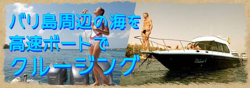 バリ島 厳選ボートチャーター Rhino クルーズ 特徴