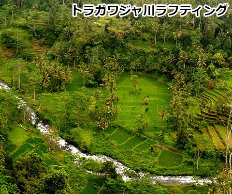 トラガワジャ川 棚田の景色が広がります