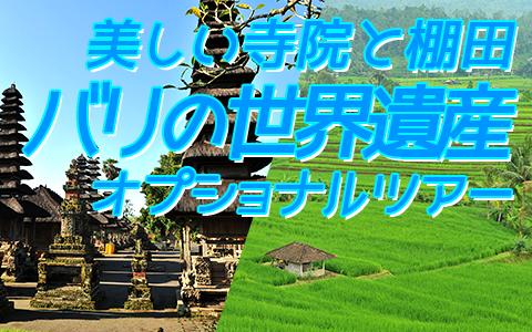 バリ島 厳選オプショナルツアー バリの世界遺産 タマンアユンとライステラスツアー 特徴