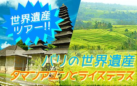 バリ島 厳選オプショナルツアー バリの世界遺産 タマンアユンとライステラスツアー