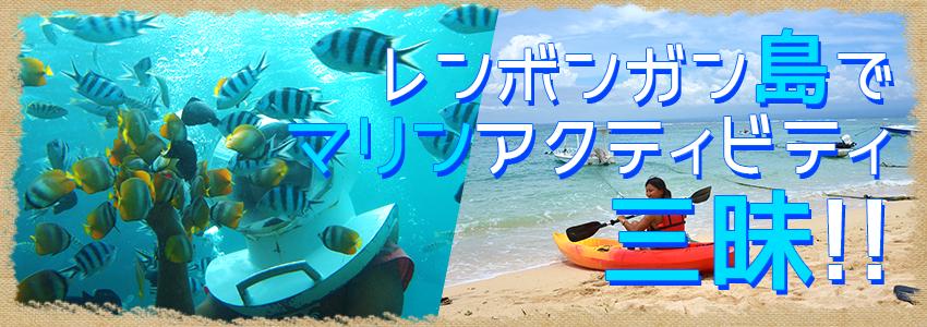 バリ島 厳選レンボンガン島 トレジャーハント with シーウォーカー 特徴