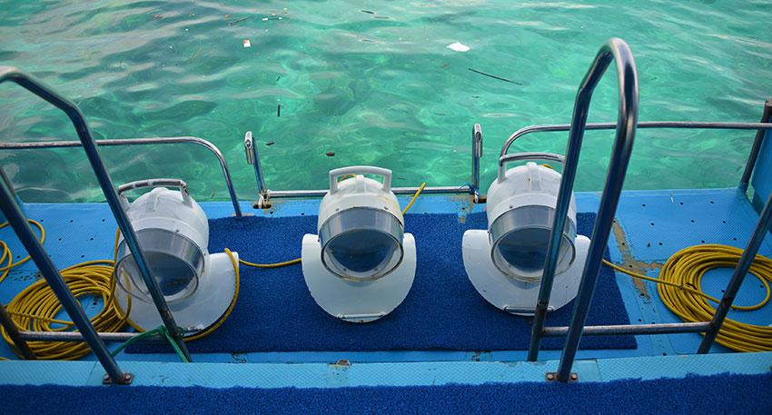 海遊びをレンボンガン島で満喫