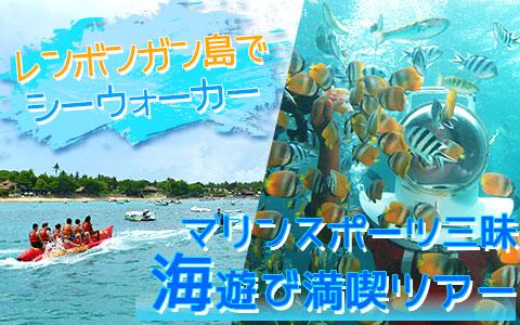 バリ島 厳選レンボンガン島 トレジャーハント with シーウォーカー