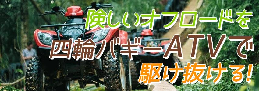 バリ島 ABIANSILA ADVENTURES ATVライド 特徴