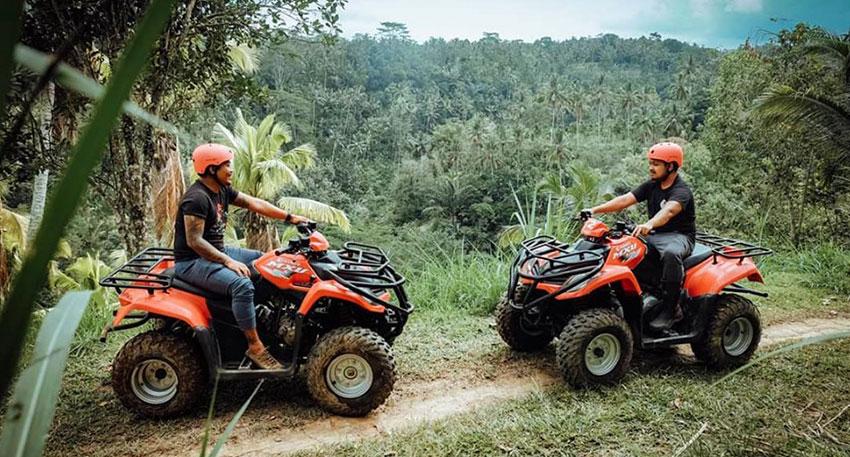 ジャングルなどの自然を楽しむことができます