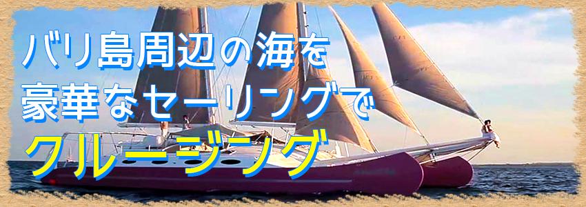 バリ島 Aneecha Catamaran クルーズ 特徴