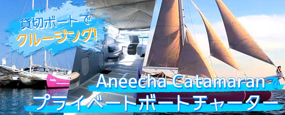 バリ島 Aneecha Catamaran クルーズ