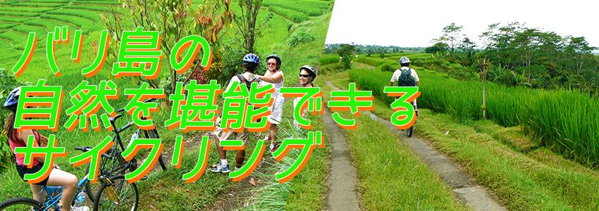 バリ島 アユンリバー サイクリング 特徴