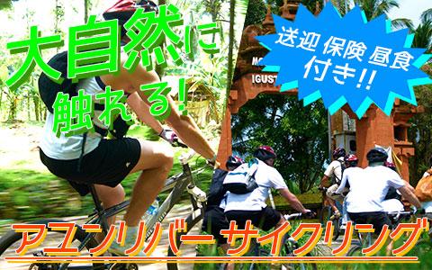 バリ島 アユンリバー サイクリング