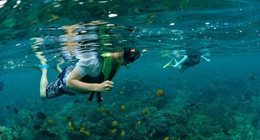 透明度が高いレンボンガン島の海でシュノーケリング