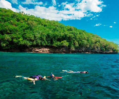 南国の海の絶景をご堪能ください