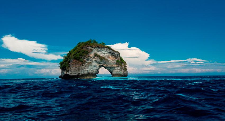 美しい海の中の景色を楽しみましょう