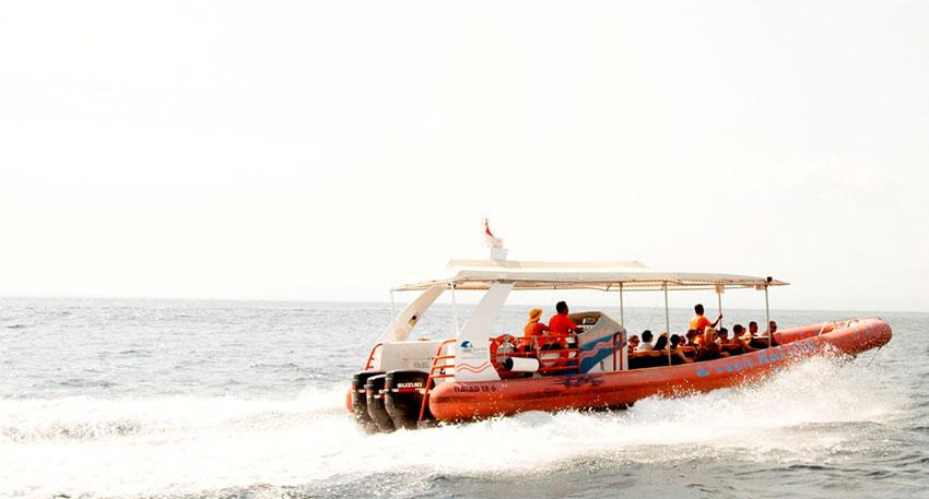 バリ島最速のクルーズ船です