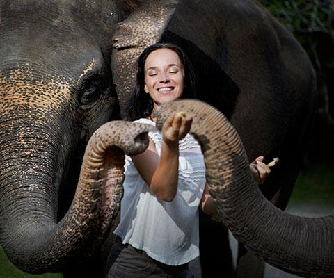バリ動物園(バリズー) ナイトズーをお楽しみください
