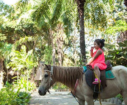 バリ動物園(バリズー) お子様連れにオススメ