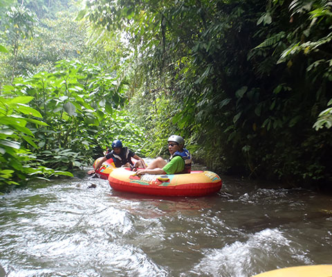 バリ島の大自然を堪能