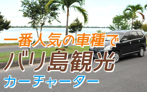 バリ島 トヨタ アパンザーG 特徴