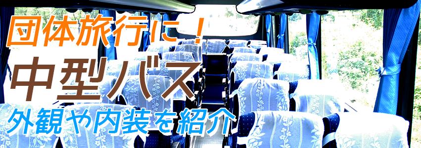 バリ島 中型バス 外観や内装をご紹介