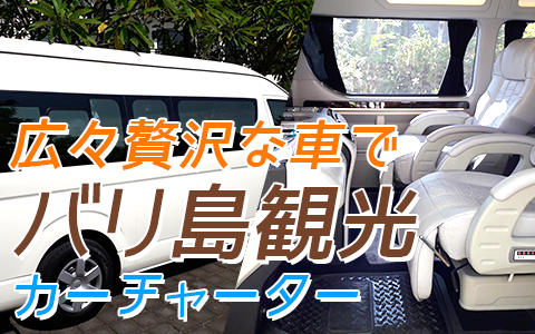 バリ島 ハイエース特別仕様車 特徴