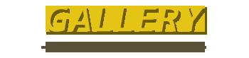 バリ島 トヨタ ヴェルファイア 写真で見る
