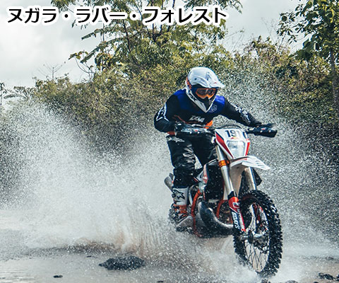 ヌガラ・ラバー・フォレスト4