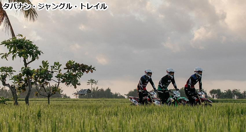タバナン・ジャングル・トレイル3