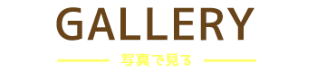 バリ島 マリンスポーツ乗り放題+ランチ食べ放題+ラフティング+レゴンダンス+ディナー 写真で見る