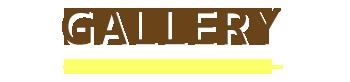 バリ島 マリンスポーツ乗り放題+ランチ食べ放題パック 写真で見る