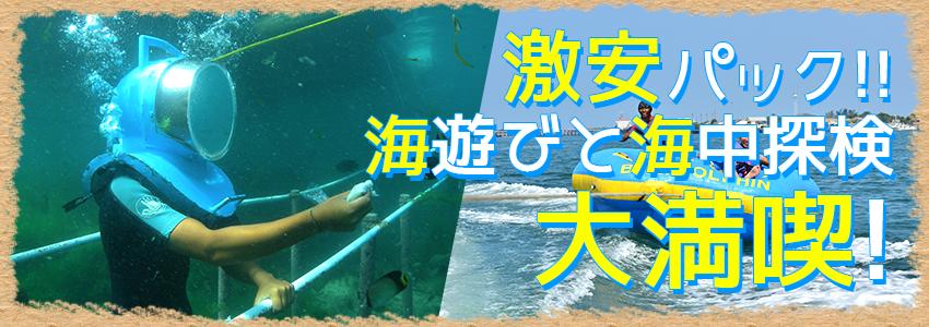 バリ島 シーウォーカー・パッケージ7in1 バリ ドルフィン社 特徴