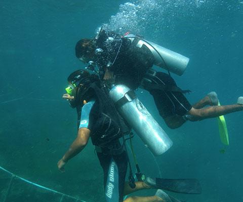 初心者も楽しめる体験ダイビング