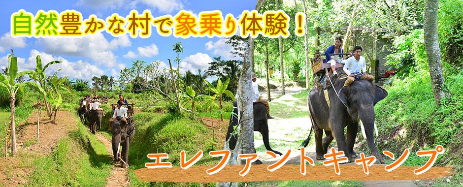 バリ島 エレファントキャンプ