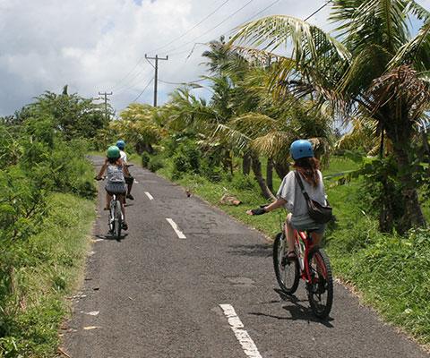 のどかな景色を眺めながらサイクリング
