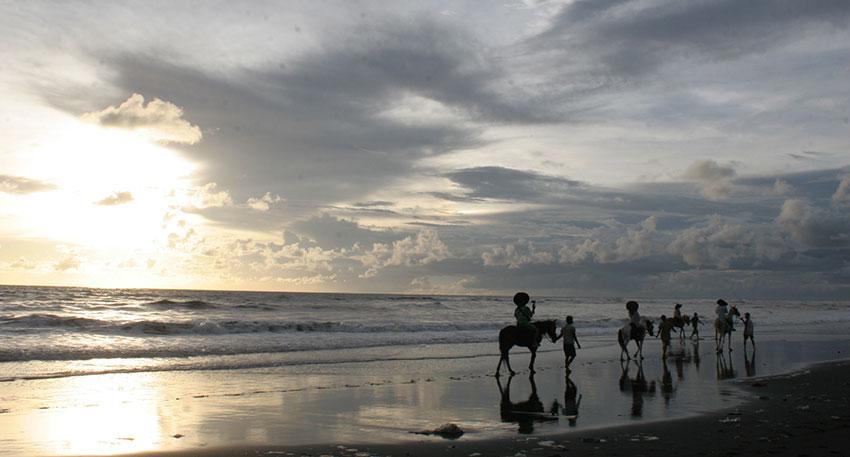 ビーチ沿いを馬に乗って散歩