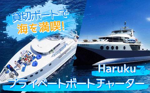バリ島 Haruku クルーズ