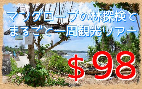 バリ島 マングローブ林とレンボンガン島まるごと一周観光ツアー 特徴