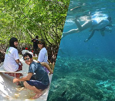 バリ島 マングローブ探検とシュノーケリングツアー 画像