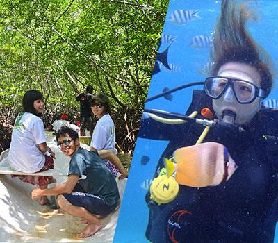 バリ島 マングローブ林と体験ダイブ 画像