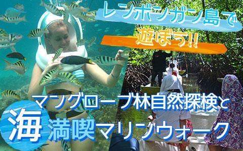バリ島 マングローブ林とお魚とサンゴ礁の世界を海中散歩「マリンウォーク・海中写真1枚付き」ツアー