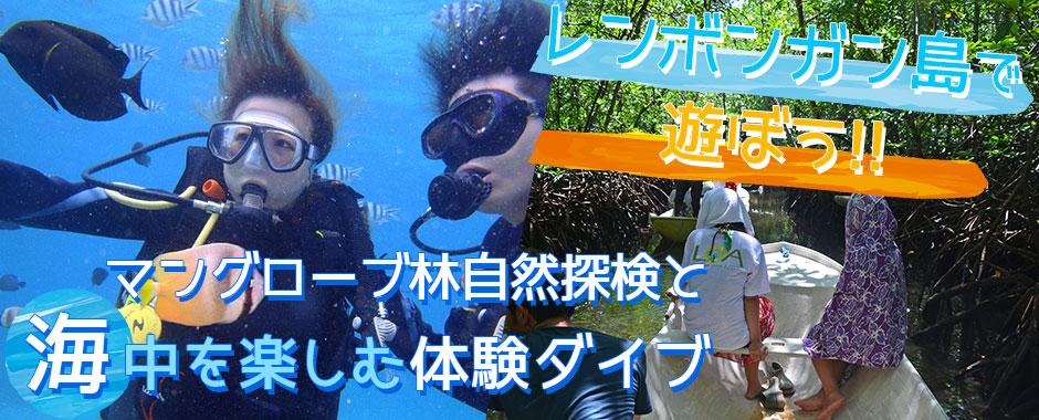バリ島 マングローブ林とサンゴ礁やキレイなお魚さんがお友達「体験ダイブ(ボートエントリー)」ツアー