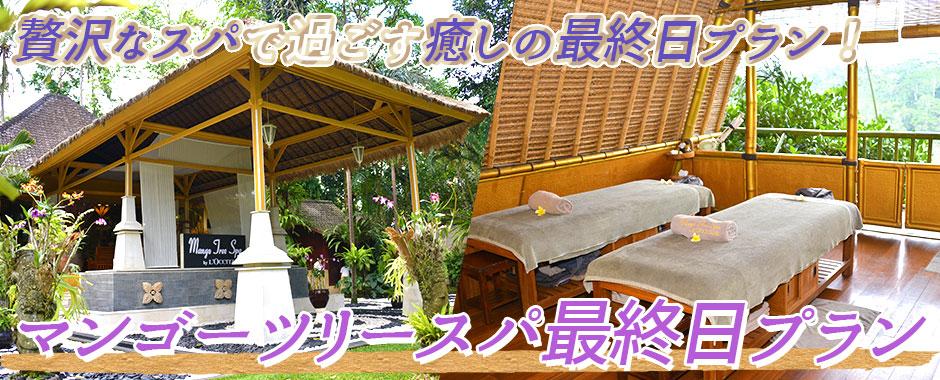 バリ島 マンゴーツリースパ 最終日プラン