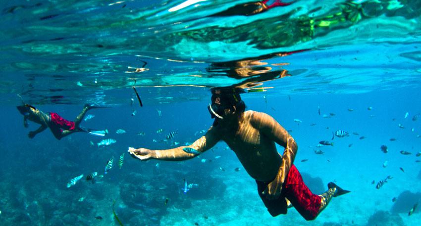 美しい海でシュノーケリングをお楽しみください