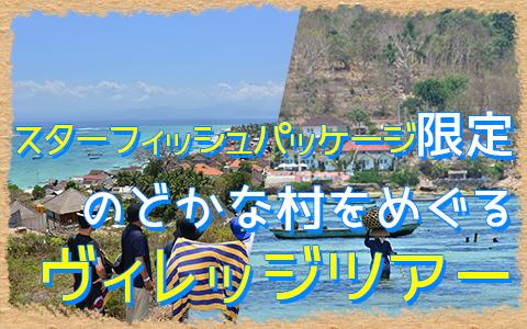 バリ島 ヴィレッジツアー 特徴