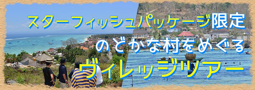 バリ島 ヴィレッジツアー特徴