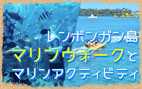 バリ島 マリンウォーク 特徴