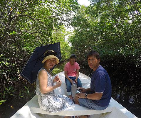トロピカルな熱帯魚が観察できます